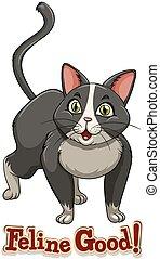 Feline - Cute little cat with text