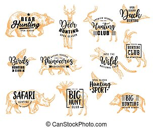 felirat, állat keres, klub, üldöz, vad, madarak