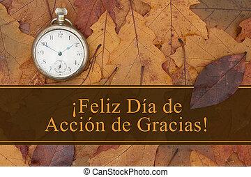 feliz, acción de gracias, saludo, en, español