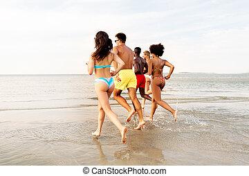 feliz, amigos, executando, ligado, verão, praia