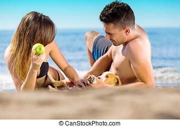 feliz, apenas casado, pareja, colocar, en la playa, manzana que come, juego, con, poco, perro