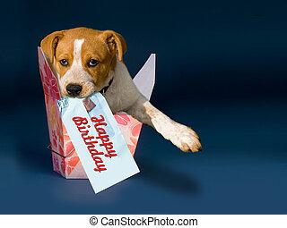 feliz, birthday.
