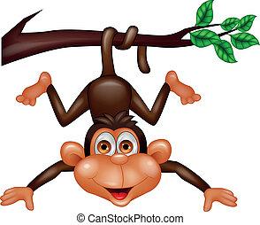 feliz, caricatura, macaco