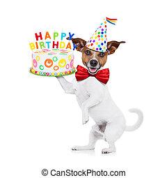 feliz cumpleaños, perro