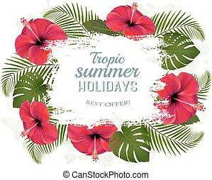 feliz, días de fiesta de verano, marco, con, flores rojas, y, tropical, leaves.