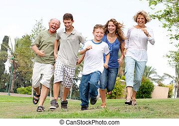 feliz, el gozar, familia , aire libre
