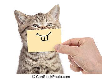 feliz, gato, con, divertido, sonrisa, en, cartón, aislado, blanco