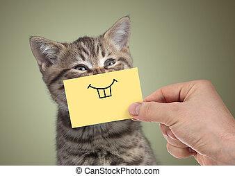 feliz, gato, con, divertido, sonrisa, en, cartón