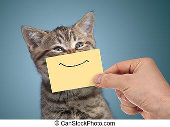 feliz, gato, retrato, com, engraçado, sorrizo, ligado, papelão