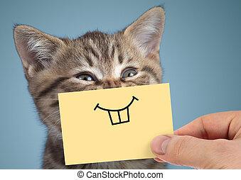 feliz, loco, gato, retrato, con, divertido, sonrisa, en, fondo azul