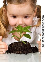 feliz, menininha, observar, planta jovem