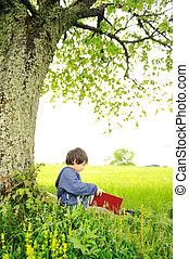 feliz, niños, lectura, el, libro, debajo, el, árbol