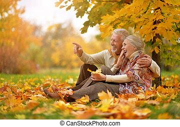 feliz, par velho, em, outono, parque, sentando