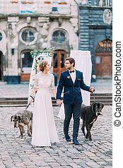 feliz, par wedding, ambulante, el, perros, en, el, lviv, centro de la ciudad