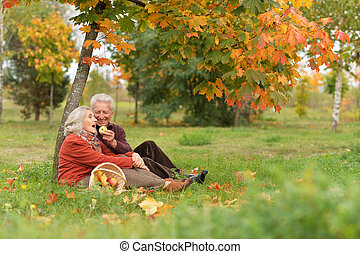 feliz, pareja mayor, sentado, en, otoño, parque