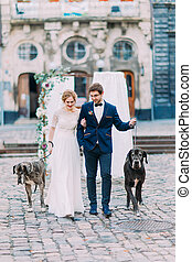 feliz, recién casados, y, su, perro, mascotas, en, el, lviv, centro de la ciudad
