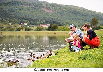 feliz, summer., família, natureza