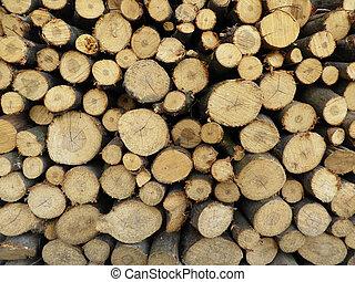 felled, inverno, fogo, timber., madeira, recentemente, pilha