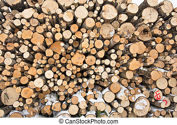 Felled Trees Timber Industry