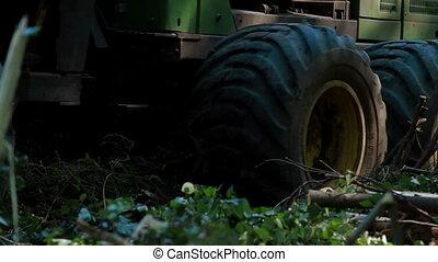 Feller Buncher drives in forest - Feller Buncher loaded with...