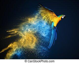 felrobbanás, papagáj, felett, repülés, ara, por, színpompás