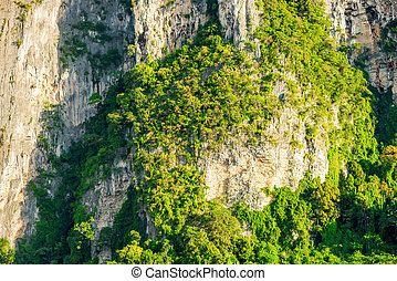 felsig, klippen, mit, wachsen, grüne bäume, asia
