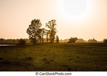 felt, solnedgang