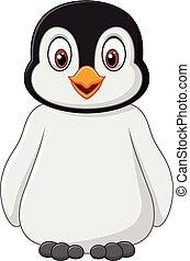 feltevő, csecsemő, csinos, elszigetelt, pingvin