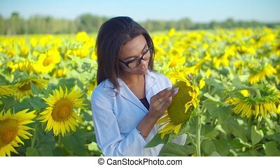 Female agronomist examining crop quality in field