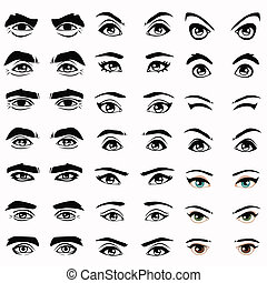 eyes and eyebrows - female and male vector eyes and eyebrows...