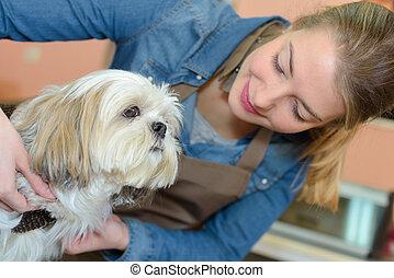 Female animal groomer with dog