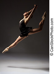 Female ballet dancer - Beautiful young female classical...