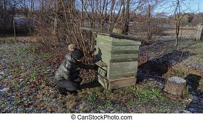 Female beekeeper inspecting beehive in winter