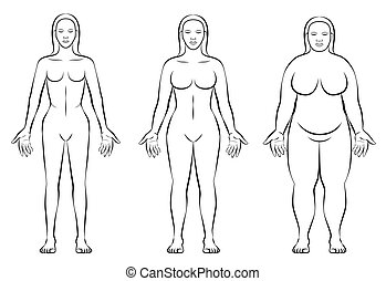 Female Body Constitution Types Thin Fat Normal Weight