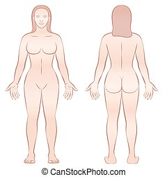 Female Body Front View Back View - Female body - front view...