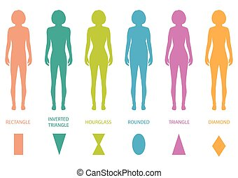 female body types anatomy, woman front figure shape, vector silhouette