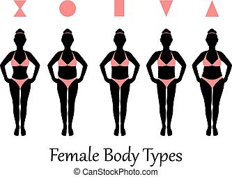 female body types - silhouettes of various types of female...