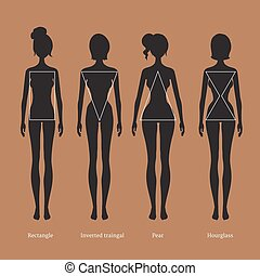 Female body types silhouettes