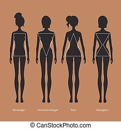 Female body types silhouettes