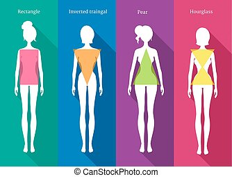 Female body types - Vector illustrations of female body...