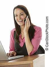 Female Businesswoman Using Laptop At Desk