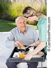 Female Caretaker Serving Breakfast To Senior Man - Female...