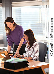 Female colleagues in office