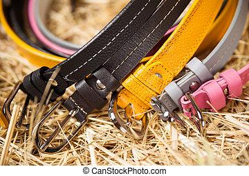 Female colored belts closeup
