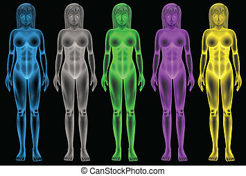 Female coloured bodies