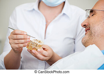 Midsection of female dentist explaining artificial teeth to patient in clinic