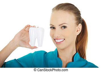 Female dentist holding a tooth model.