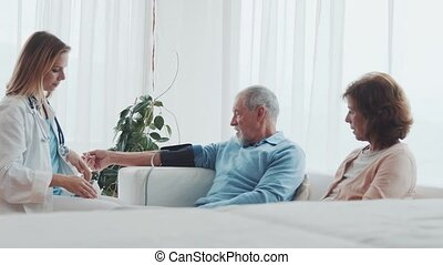Female doctor checking blood pressure of senior man. - Young...