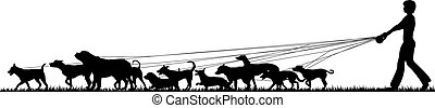 Female dog walker - Foreground silhouette of a woman walking...