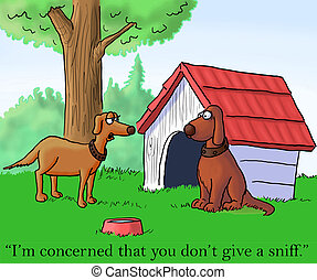 """Female dog wants to be sniffed by man - """"I'm concerned that..."""